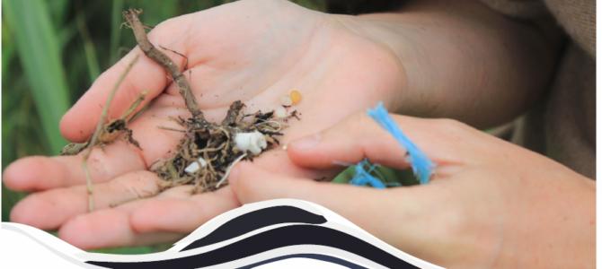 Rapport de synthèse 2018 sur les micro-plastiques sur la baie de Douarnenez