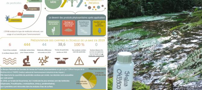 Quels pesticides dans nos rivières ?