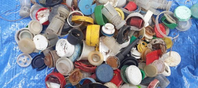 Collecte des déchets plastiques à l'Aber le 30/07/20 : les résultats